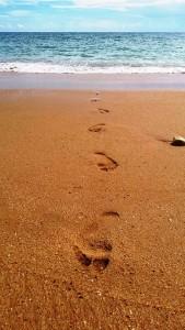 footsteps-504950_640